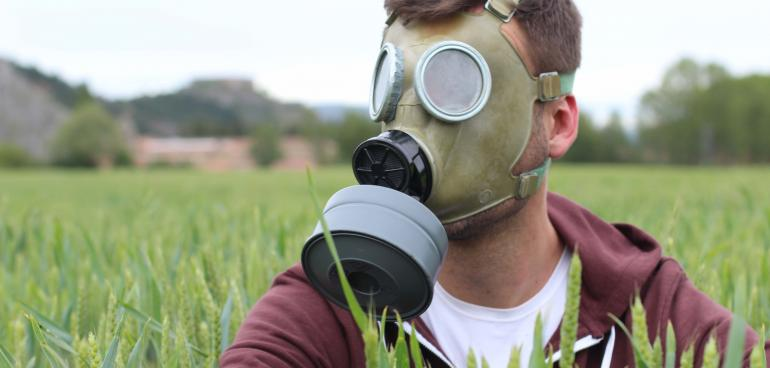 Consultation pesticides gouvernement
